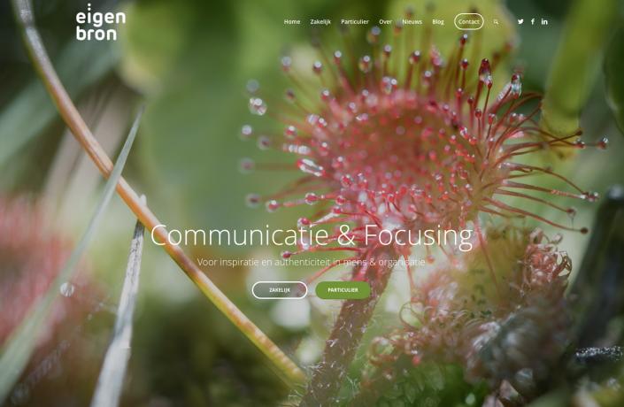 Website Eigen Bron