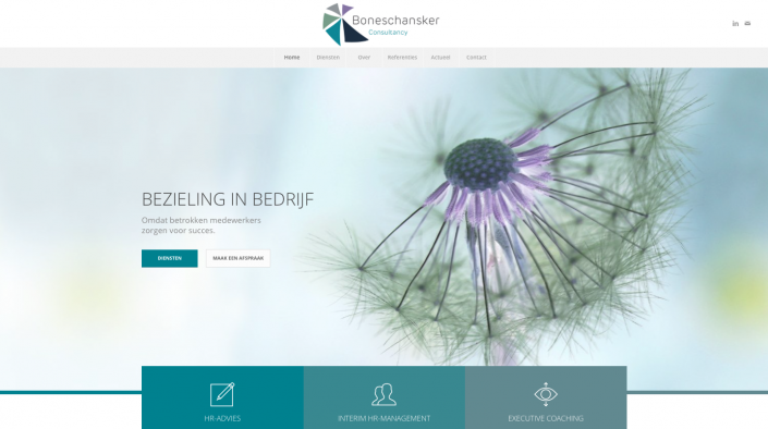 Website Boneschansker Consultancy